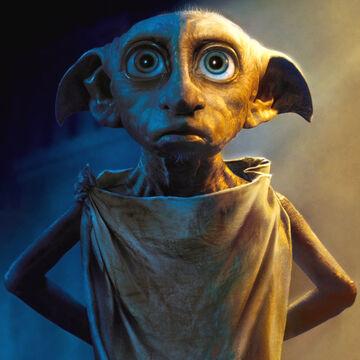 Dobby | Harry Potter Wiki | Fandom