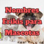 nombres frikis para mascotas, nombres originales y divertidos para mascotas