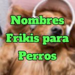 Nombres frikis para perros, lista de nombres frikis y originales para perros