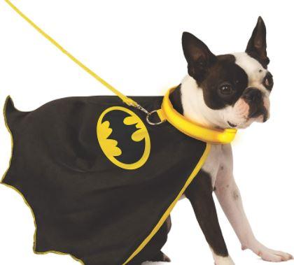 comprar productos y accesorios frikis para tu perro, cosas frikis para perros a buen precio