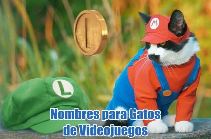 Nombres para gatos de videojuegos. nombres de personajes de videojuegos para tu gato o gata, nombres frikis y divertidos de juegos de video para gatos